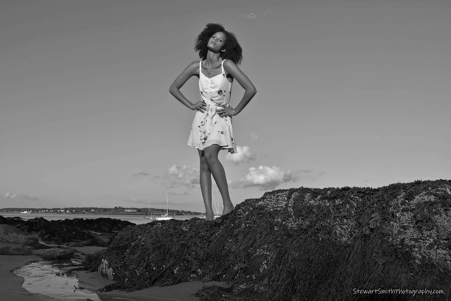 stewart smith photography